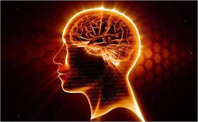 Importância do Magnésio para o Cérebro